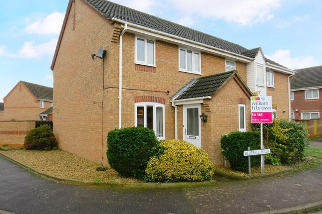 3 bed semi-detached house to rent in Bluebell Walk, Brandon IP27