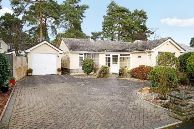 Thumbnail Bungalow to rent in Shirley Close, West Moors, Ferndown
