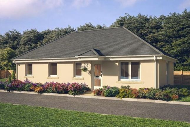 Thumbnail Detached bungalow for sale in New Build Bungalows, Caerphilly Road, Llanbradach