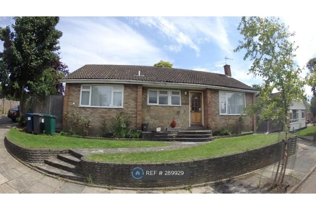 Thumbnail Bungalow to rent in Silvercliffe Gardens, Barnet
