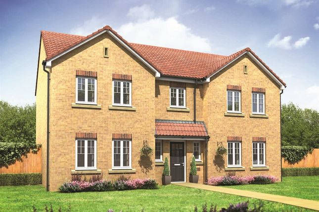 "Thumbnail Detached house for sale in ""The Bond "" at Cawston Road, Aylsham, Norwich"