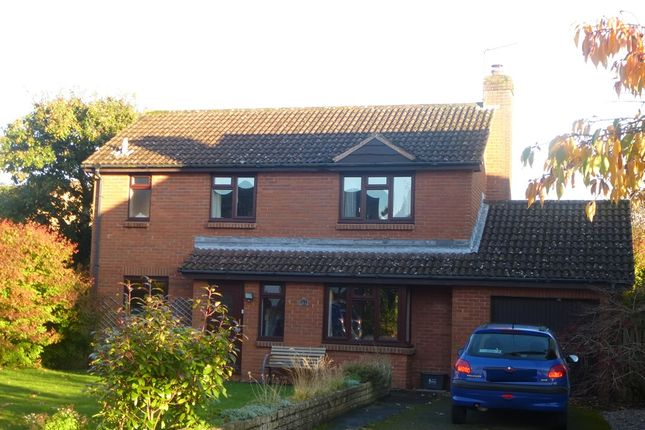 Thumbnail Detached house for sale in Anglesey Mead, Pewsham, Chippenham