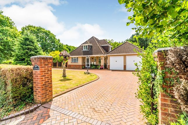 Thumbnail Equestrian property for sale in Castle Lane, North Baddesley, Southampton