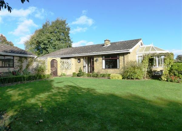 Thumbnail Detached bungalow for sale in Holme Hall Avenue, Bottesford, Scunthorpe