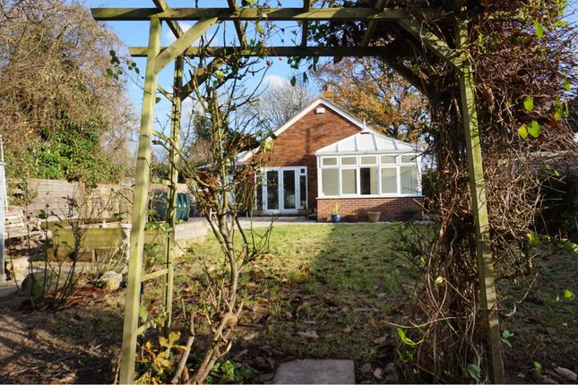 Thumbnail Detached bungalow for sale in The Green Lane, Leigh