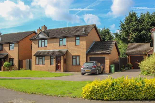 Thumbnail Detached house for sale in The Pippins, Wilton, Ross-On-Wye