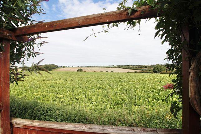 Outside - Rear of Garden Close, Shotley, Ipswich IP9