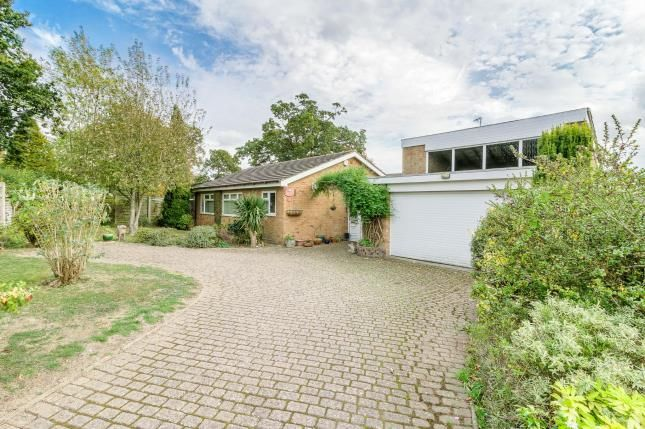 Thumbnail Bungalow for sale in The Bury, Pavenham, Bedford, Bedfordshire