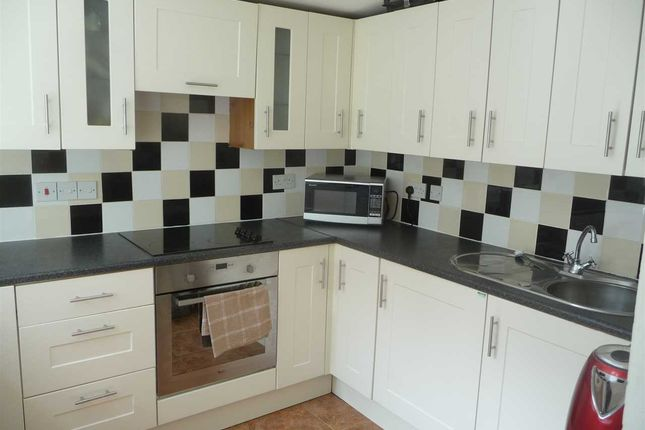 Thumbnail Terraced house to rent in Allendale Road, Mutley, Plymouth