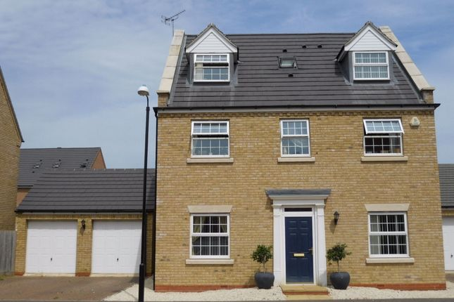 Thumbnail Detached house to rent in Driffield Way, Peterborough