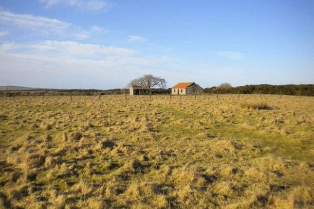 Land for sale in Bower, Wick