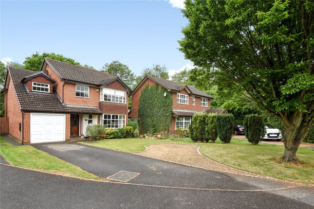 Thumbnail Detached house to rent in Woodford Green, Bracknell, Berkshire