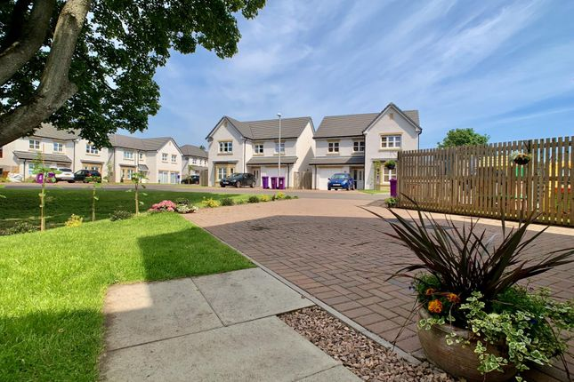 Img_0226 of Margaret Lindsay Place, Monifieth, Dundee DD5