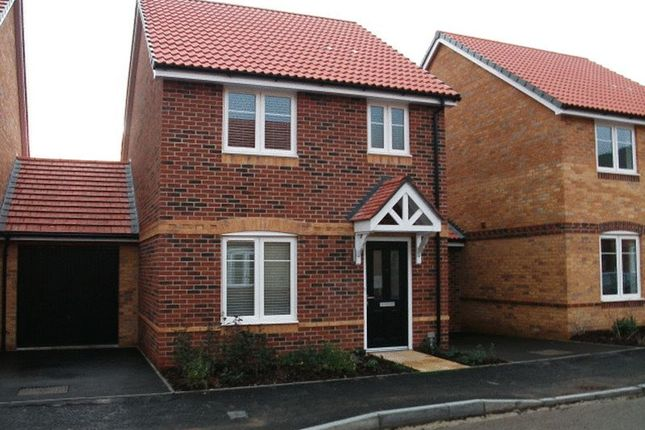 Thumbnail Detached house to rent in Reed Street, Didcot