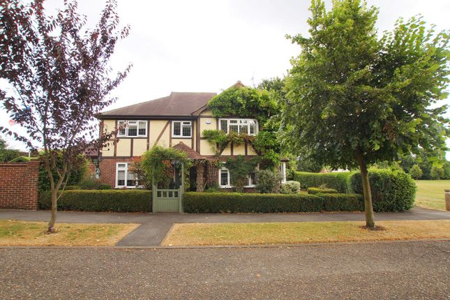 Thumbnail Detached house for sale in The Chestnuts, Rayleigh