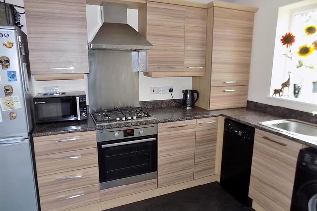 Thumbnail Terraced house for sale in Blenheim Road South, Longlands, Middlesbrough