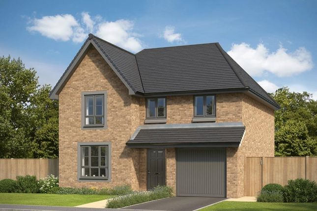 "Thumbnail Detached house for sale in ""Cullen"" at Countesswells Park Road, Countesswells, Aberdeen"