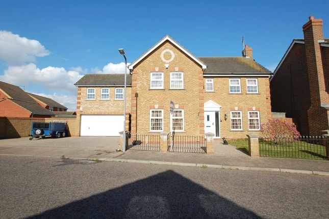 Thumbnail Detached house for sale in Whitmore Close, Orsett, Grays