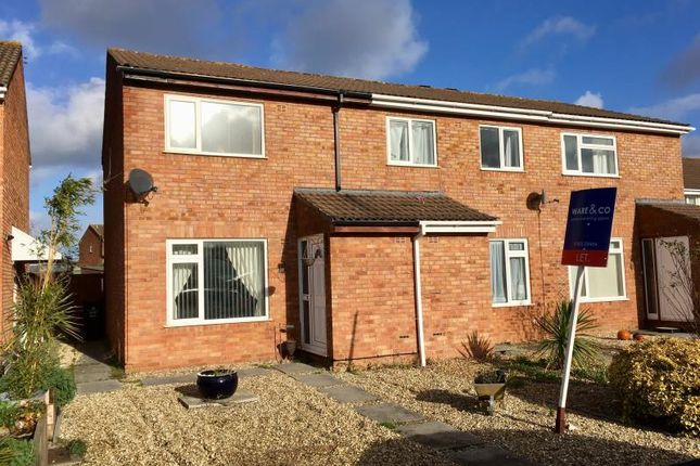 Thumbnail Semi-detached house to rent in Hamlyn Close, Taunton, Somerset