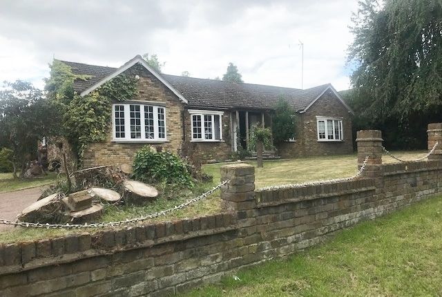 Thumbnail Detached bungalow to rent in Andrews Lane, Cheshunt, Waltham Cross