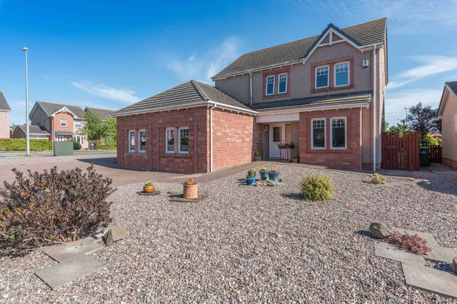 Thumbnail Detached house for sale in Eider Close, Montrose