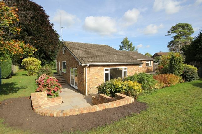Thumbnail Detached bungalow to rent in Main Road, Walters Ash, High Wycombe
