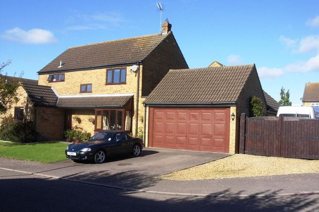 Thumbnail Detached house to rent in Brittons Close, Sharnbrook, Bedford