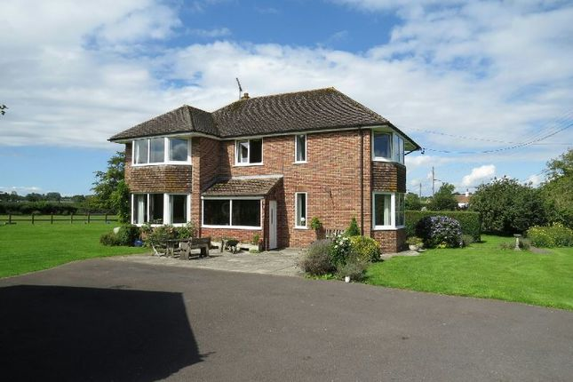 Thumbnail Detached house for sale in Wolvershill Road, Banwell
