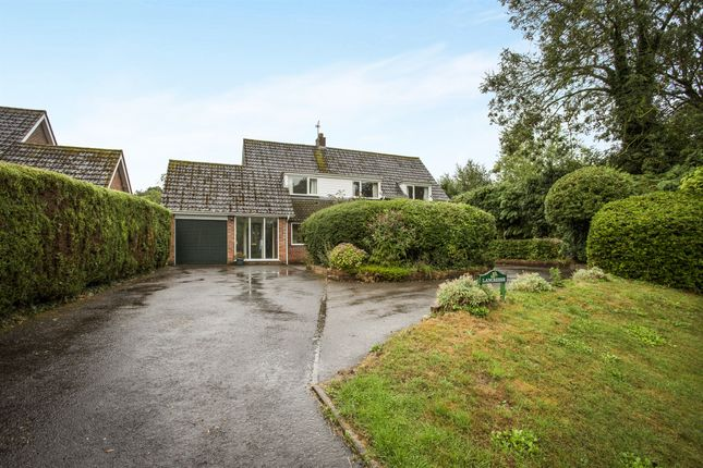 Thumbnail Detached house for sale in Snow Street, Roydon, Diss
