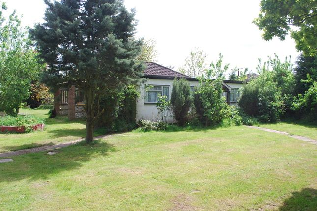 Thumbnail Detached bungalow for sale in West Tofts, Thetford