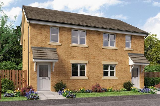"""Thumbnail Mews house for sale in """"Angus Mid Terr"""" at Bo'ness"""