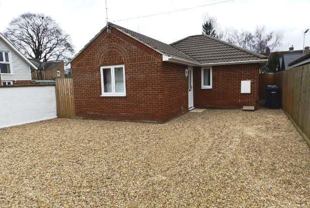 Thumbnail Detached bungalow to rent in Cauldwell Hall Road, Ipswich
