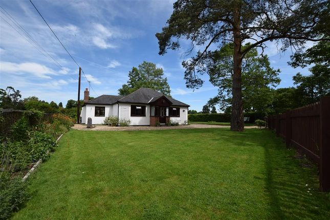 Thumbnail Detached bungalow for sale in Basingstoke Road, Spencers Wood, Reading