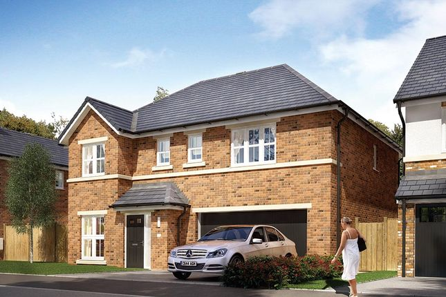 "Thumbnail Detached house for sale in ""The Cotham"" at Rectory Lane, Guisborough"