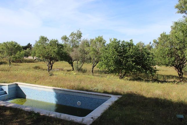 Pool And Gardens of Chiclana De La Frontera, Chiclana De La Frontera, Cádiz, Andalusia, Spain