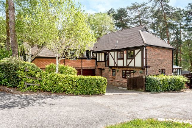 Thumbnail Detached house for sale in Youlden Drive, Camberley, Surrey