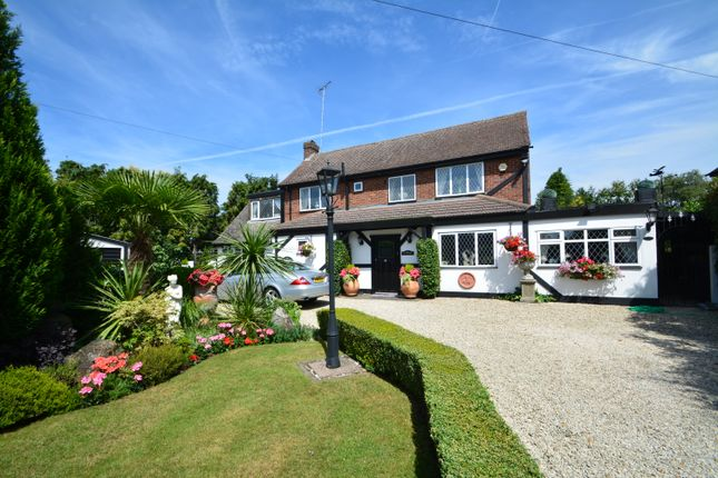 Thumbnail Detached house for sale in Redhill, Denham