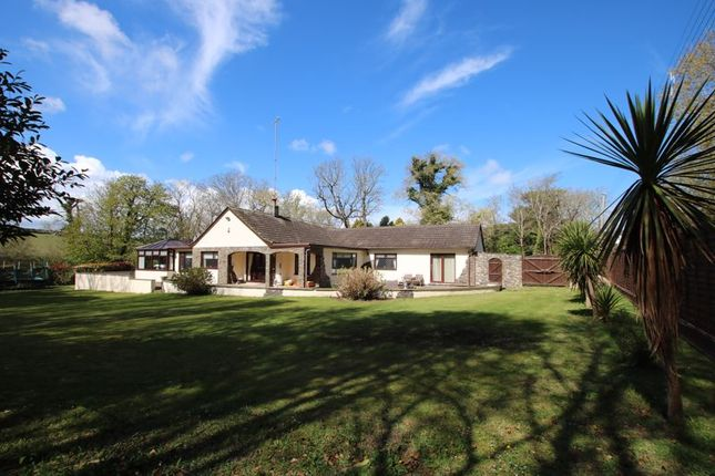 Thumbnail Detached bungalow for sale in Watersmeet, Phildraw Road, Ballasalla