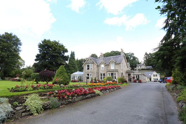 Thumbnail Hotel/guest house for sale in The Claymore 162 Atholl Road, Perthshire