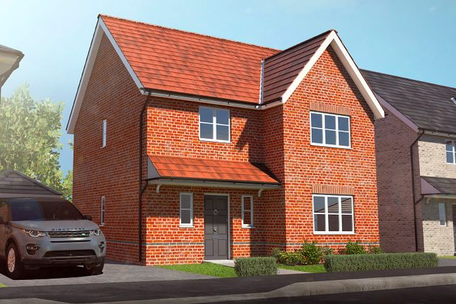 Thumbnail Detached house for sale in Heckfords Road, Great Bentley, Colchester