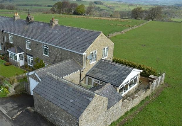 Thumbnail End terrace house for sale in Plane Trees, Keenley, Allendale