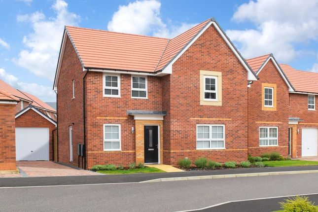 "Thumbnail Detached house for sale in ""Camberley"" at Livingstone Road, Corby"