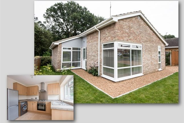 Thumbnail Detached bungalow for sale in Willow Road, South Wootton, King's Lynn