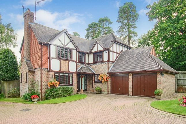 Thumbnail Detached house for sale in Burston Gardens, East Grinstead, West Sussex