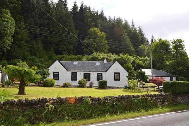 Thumbnail Bungalow for sale in Shore Road, Kilmun, Argyll And Bute