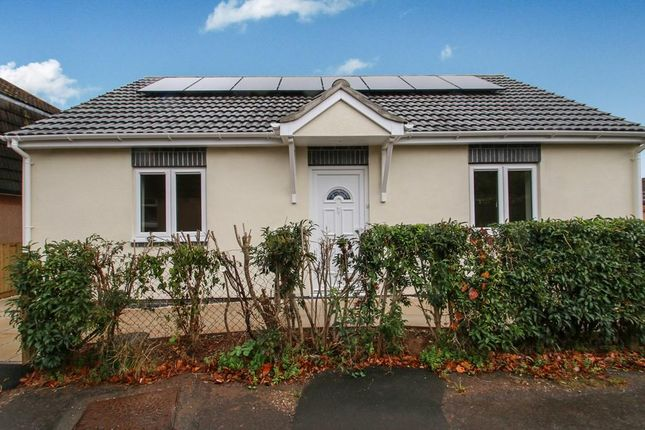 Thumbnail Bungalow to rent in Whitecroft, Williton, Taunton