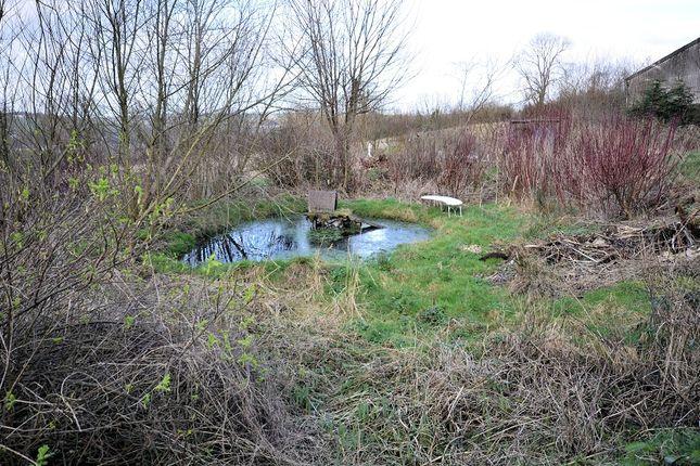 Property For Sale Blaenhalen Farm Newcastle Emlyn