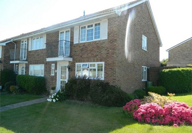 Thumbnail Semi-detached house for sale in Jarvis Brook Close, Bexhill-On-Sea, East Sussex