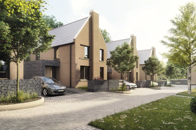 Thumbnail Detached house for sale in The Barnes, Westbury