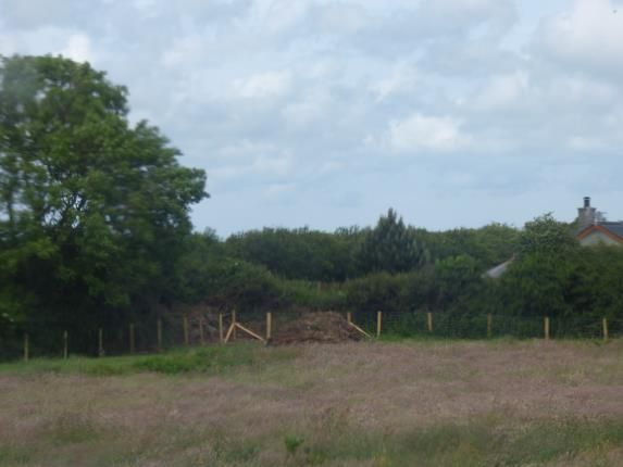 Rear Garden of Green Terrace, Llangaffo, Anglesey, Sir Ynys Mon LL60